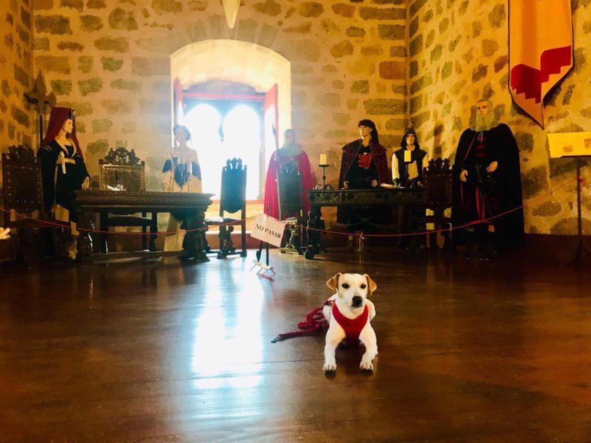 Pipper ha visitado el Castillo del Condestable Dávalos de Arenas de San Pedro