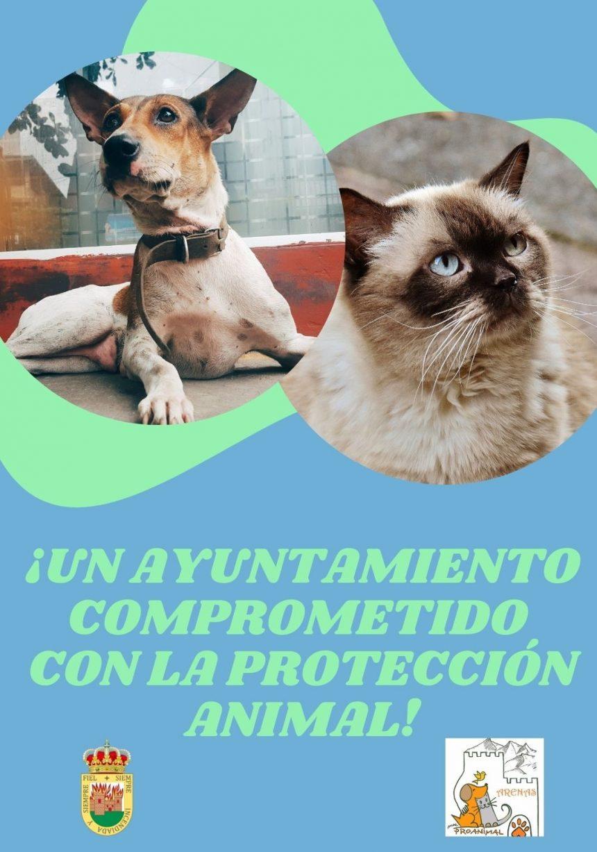 🐶🐱 UN AYUNTAMIENTO COMPROMETIDO CON LA PROTECCIÓN ANIMAL 🐶🐱